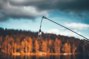 fischerprüfung bild blinker